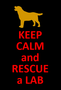 Keep Calm and Rescue a Lab